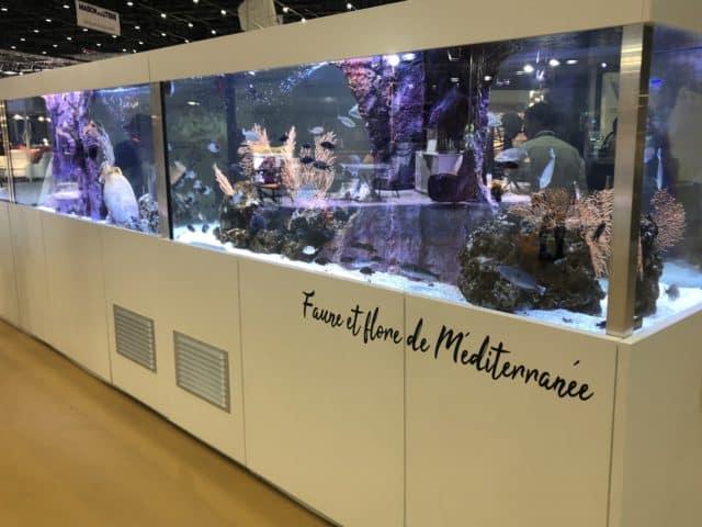 Plongée aquarium Var