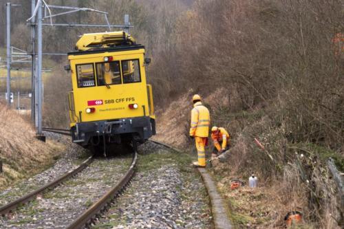 Un train était entré en collision avec un arbre dans la matinée.